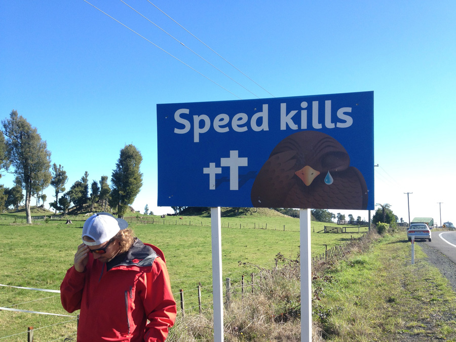 New Zealand Funny Road Signs - Free funny new zealand photos